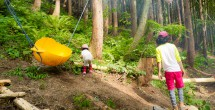 Kidsの森の風景