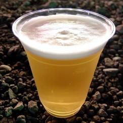 コシヒカリ生ビール