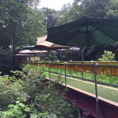 グリーンステージに向かう橋