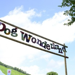【会場紹介】Dog Wonderland
