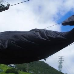 PYRAMID GARDENの看板クジラ