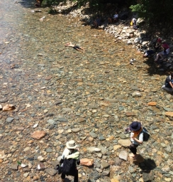 川でお昼寝