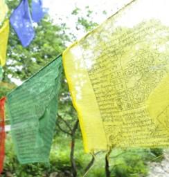 5色の旗で飾られたボードウォークの橋
