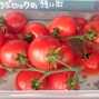 キンキン冷やしトマト