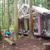 雨の木道亭